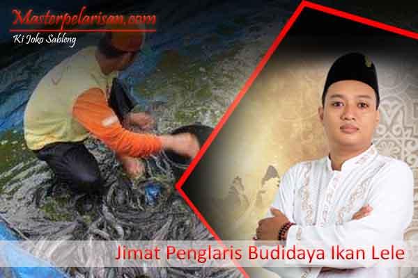 Jimat Penglaris Bisnis Budidaya Ikan Lele